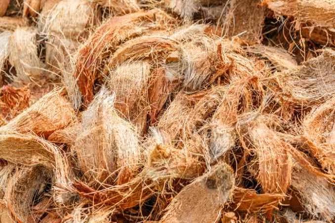 kegunaan sabut kelapa